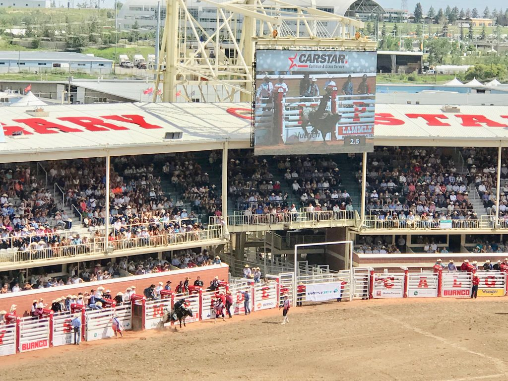 Bull riding at Calgary Stampede Rodeo